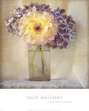 Dahlia with Hydrangeas I Prints by Sally Wetherby