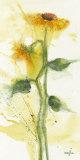 Tournesol II Kunstdruck von  Marthe