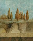 Inspired by Nature I Kunstdrucke von Norm Olson
