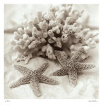 La Mer I Posters par Alan Blaustein