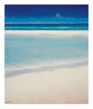 Sand Bar 2 Collectable Print by Derek Hare