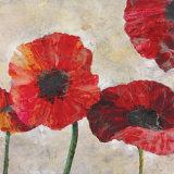 Poppies Art by  Austen