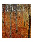 Strandskov Giclée-tryk af Gustav Klimt