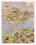 Red Water Lilies Arte por Claude Monet