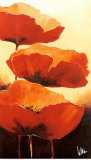 Three Red Poppies I Prints by Jettie Rosenboom