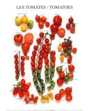 Tomaten Kunstdrucke