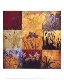 Iris Nine Patch II Plakater af Don Li-Leger