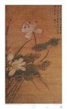 Lotus Flowers Posters por Mei Feng