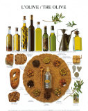 Die Olive Kunstdrucke