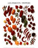 Paprika und Pfeffer Kunstdrucke