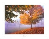 Autumn Mist Prints by Mike Jones
