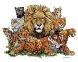 Große Katzen Poster von Peter Kull