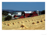 Amish Farm with Sheaves of Wheat Fotografisk tryk af David M. Dennis