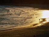 The Setting Sun Illuminates Surfers and Swimmers on Bondi Beach, Sydney, Australia Lámina fotográfica por Glenn Beanland
