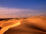 Animal Tracks on Sand Dune in Little Sahara Desert, Australia Fotografie-Druck von John Banagan