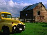 Old Barn and Yellow Pick-Up Truck in Montana, Montana, USA Fotografisk tryk af Carol Polich