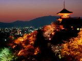 Main Hall, Sakura Trees and Pagoda Lit Up at Night at Kiyomizu-Dera Temple, Kyoto, Japan Lámina fotográfica por Frank Carter