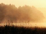 Morning Mist, Lake Vattern, Jonkoping, Sweden Lámina fotográfica por Christer Fredriksson