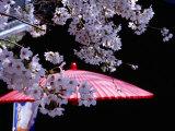 Red Umbrella and Cherry Blossoms, Kyoto, Japan Lámina fotográfica por Frank Carter