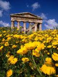 Greek Temple in Spring, Agrigento, Sicily, Italy Fotografisk tryk af Izzet Keribar