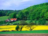 Champs de colza et forêts entourant une ferme dans la péninsule de Kulla, Skane, Suède Reproduction photographique par Anders Blomqvist