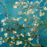 Branches d'amandier en fleurs, Saint-Rémy, 1890 Reproduction d'art par Vincent Van Gogh