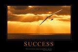 Succes, Deltavlieger boven zee, met Engelse tekst: Success Foto