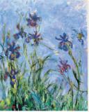 Irises (detail) Trykk på strukket lerret av Claude Monet