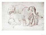 Three Elephants Giclée-tryk af  Rembrandt van Rijn