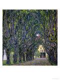 Tree-Lined Road Leading to the Manor House at Kammer, Upper Austria, 1912 Giclée-tryk af Gustav Klimt