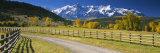 Fence along a Road, Sneffels Range, Colorado, USA Fotografisk trykk av Panoramic Images,