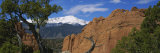 Trees in Front of a Rock Formation, Pikes Peak, Garden of the Gods, Colorado Springs, Colorado, USA Photographic Print by  Panoramic Images