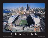 Seattle Seahawks- Quest Field Lámina