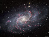 The Triangulum Galaxy Photographic Print by  Stocktrek Images