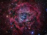 The Rosette Nebula Photographic Print by  Stocktrek Images