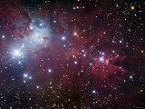 NGC 2264, the Cone Nebula Region Fotografie-Druck von  Stocktrek Images
