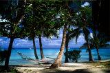 Tropical Retreat Kunstdrucke von Beverly Factor