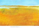 Marsh Tide Prints by Michael Rogovsky