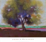 Twilight Oak IV Prints by Dennis Rhoades