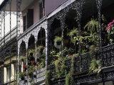 French Quarter, New Orleans, Louisiana, USA Reproduction photographique par Charles Bowman