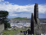 St. Mary's Abbey Ruins and the Harbour, Howth, Co. Dublin, Eire (Republic of Ireland) Reproduction photographique par Pearl Bucknall