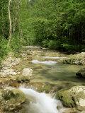 Gorges d'Omblez, Near La Chapelle En Vercors, Drome, Rhone Alpes, France Reproduction photographique par Michael Busselle