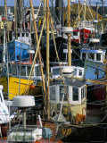 Fishing Port, Kilmore Quay, County Wexford, Leinster, Eire (Ireland) Reproduction photographique par Bruno Barbier