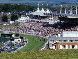Horses Racing and Crowds, Goodwood Racecourse, West Sussex, England, United Kingdom Reproduction photographique par Jean Brooks