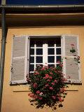 Shutters and Window, Aix En Provence, Provence, France Reproduction photographique par Jean Brooks