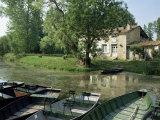 Marais Poitevin, Near Coulon, Western Loire, Poitou Charentes, France Reproduction photographique par Michael Busselle