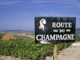 Route Du Champagne Sign, Near Epernay, Marne, Champagne Ardenne, France Reproduction photographique par Michael Busselle