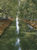 Canal De Brienne, Town of Toulouse, Haute Garonne, Midi-Pyrenees, France Photographic Print