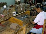 Leon Jimenes Cigar Factory, Town of Santiago, Saint Domingue (Santo Domingo), Dominican Republic Reproduction photographique par Bruno Barbier