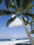 Beach at Kailua-Kona, Island of Hawaii (Big Island), Hawaii, USA Reproduction photographique par Ethel Davies